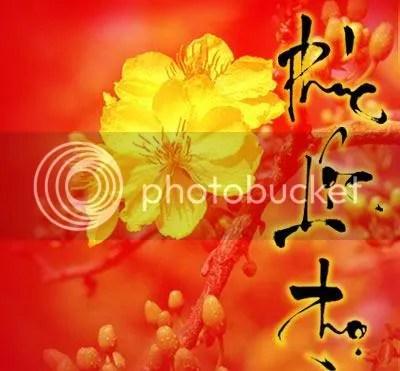 https://i0.wp.com/i274.photobucket.com/albums/jj250/huuthanhgiuse/Chuc-mung-Nam-moi_07.jpg