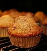 muffin piccolo Pictures, Images and Photos