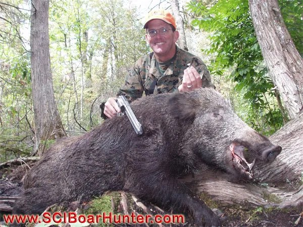 Boar Hunting Big Russians