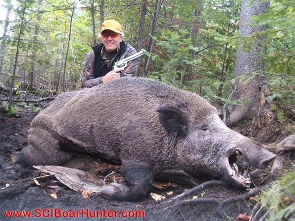 Russian Boar Hunting with Mr Smith