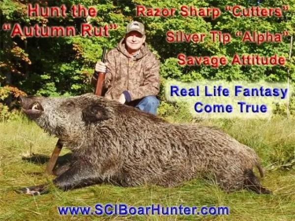Hunt Russian Boar