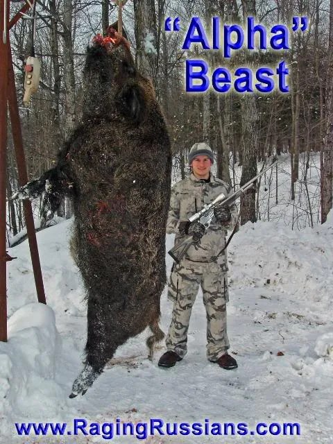 Monster Boar