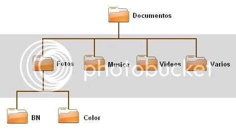 estructura directorios