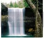 fountain of life, air kehidupan