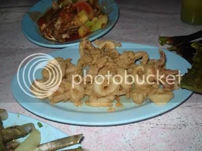 Sotong goreng tepung tahap cipan sedapnya (tapi tak rasa cipan la sotong ni)