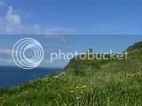 photo P1110060_zpsj6czqj2n.jpg