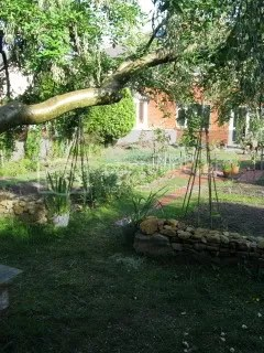 vegatables,garden