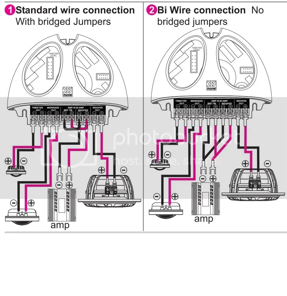Pyle Lifier And Subwoofer Wiring Diagram Free Picture Auto Related With