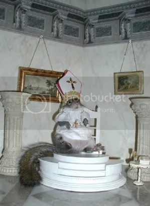 Popesquirrel.jpg picture by kking8888
