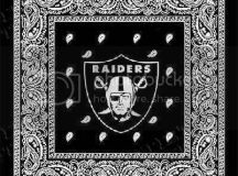 oakland raiders team graphics and comments