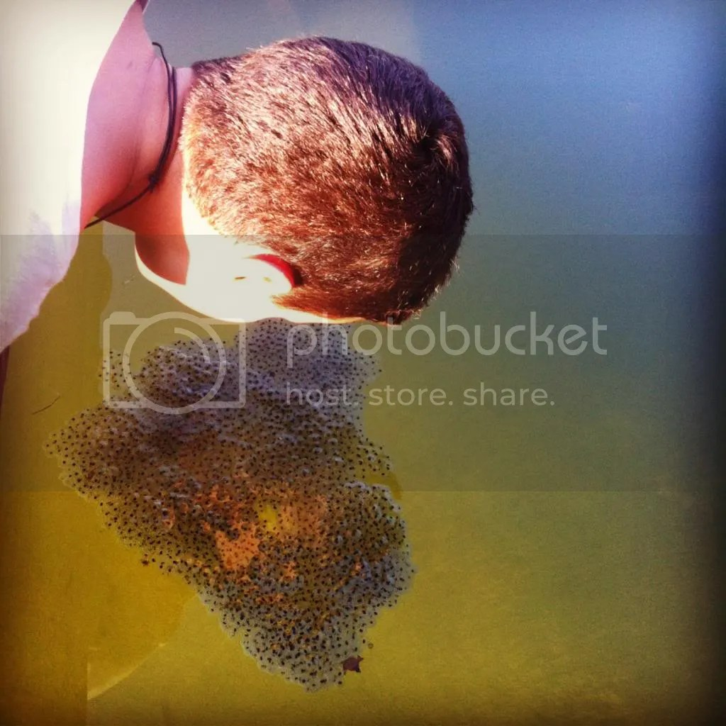 photo bubbles_zps6890eac7.jpg