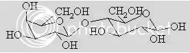 Protein dalam kasein yang mengalami hidrolisis