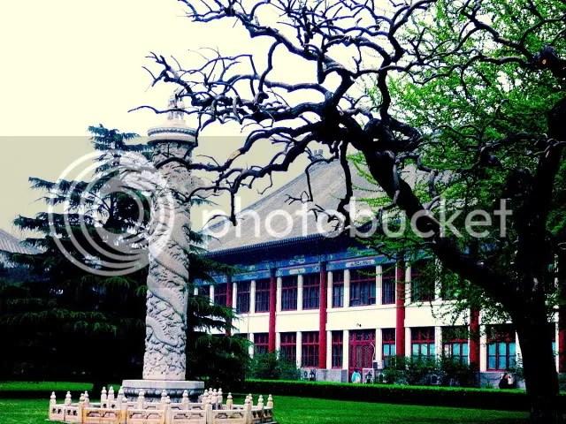 Peking University 2008