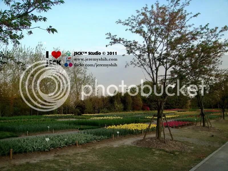 Shanghai Botanical Garden