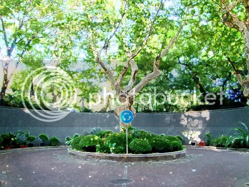 The Memorial Tree