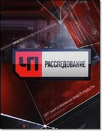 ЧП. Расследование. Анатомия протеста (15.03.2012/SATRip)