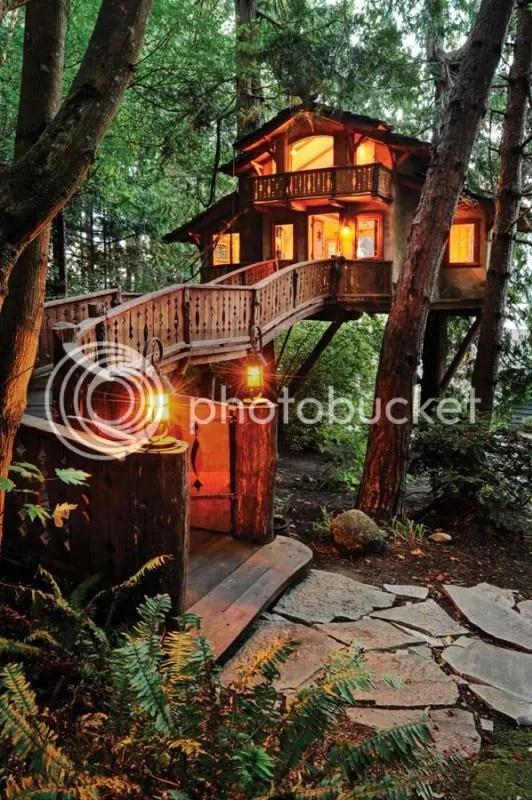photo treehouse.jpeg