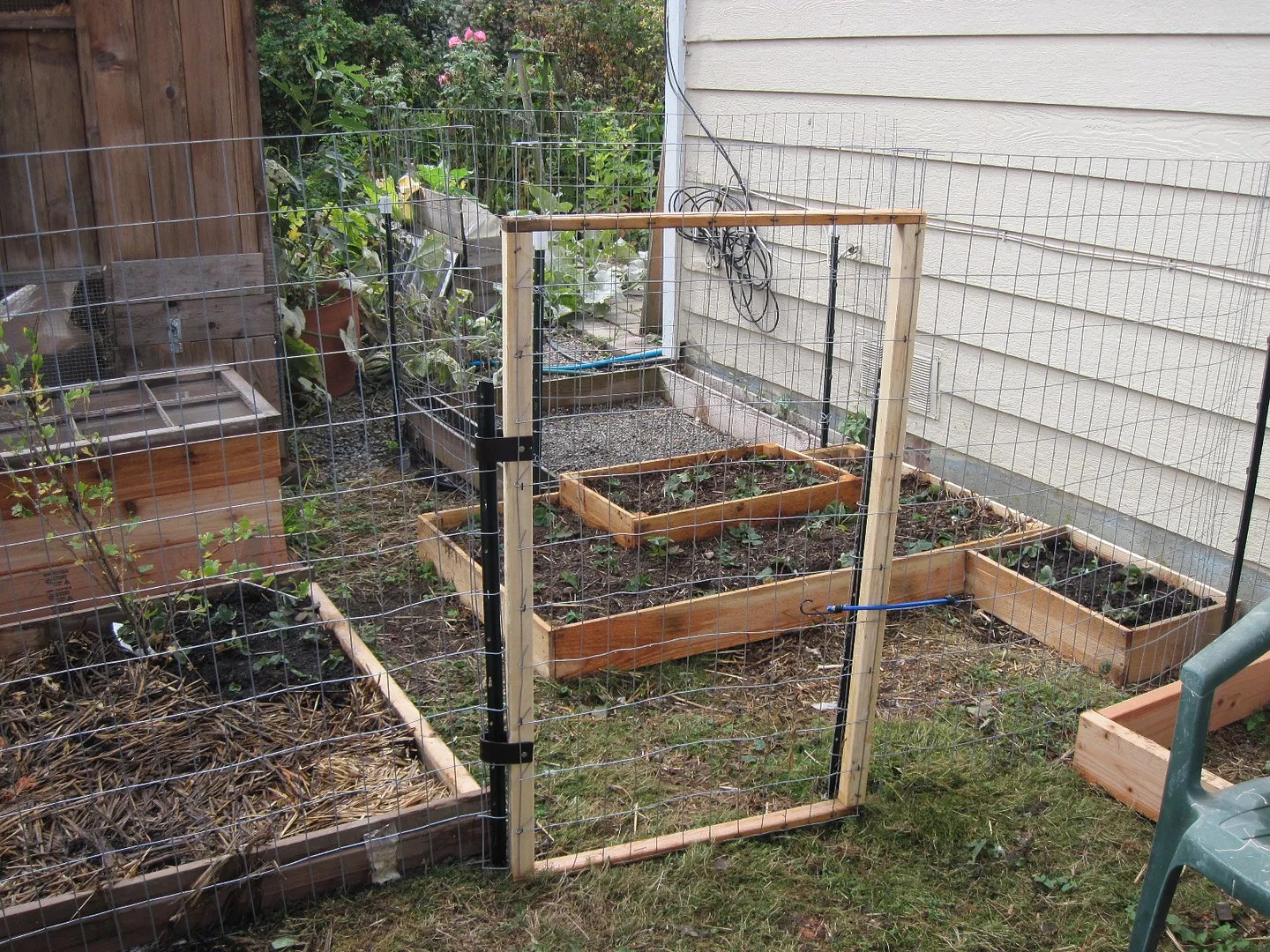 building quail coops fences and garden beds out of eden