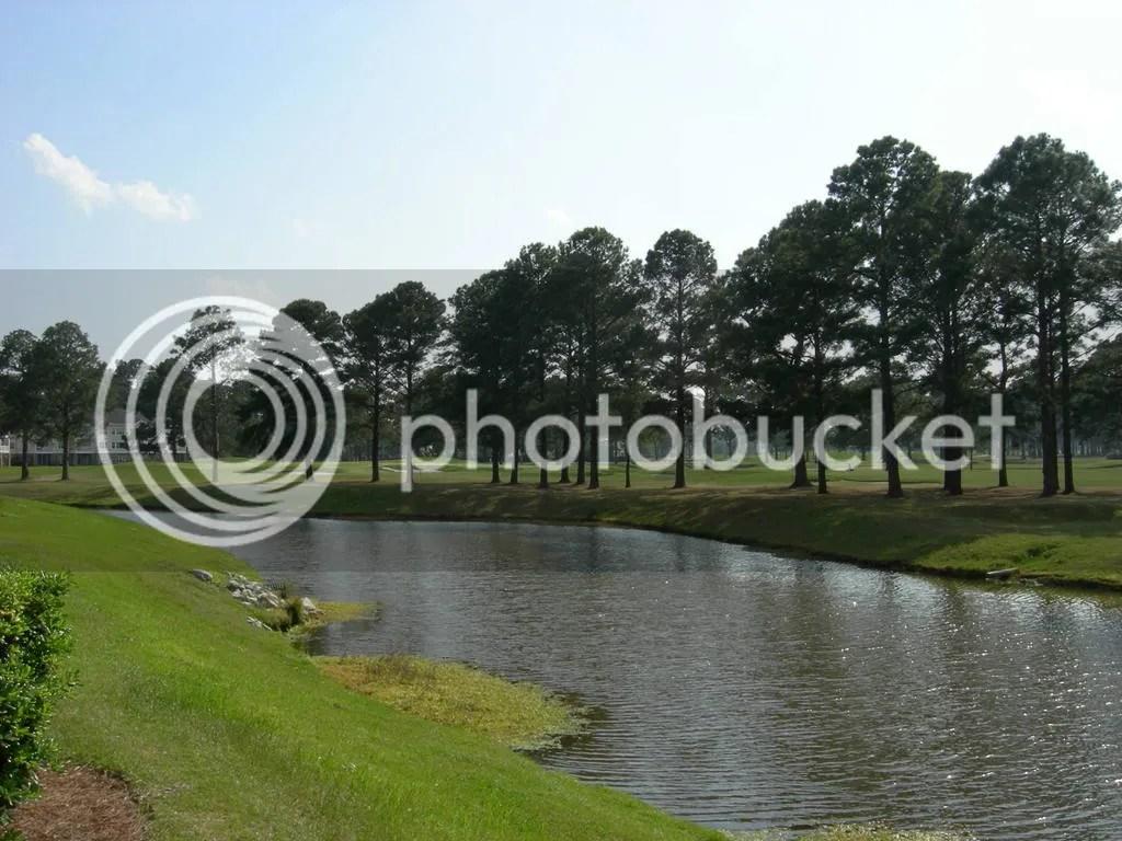 Magnolia north pools