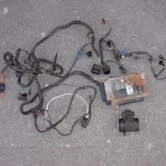 Vw Golf Mk2 Wiring Diagram The Parts Of Cherry Blossom Tree Mk3 Harness 18 Images