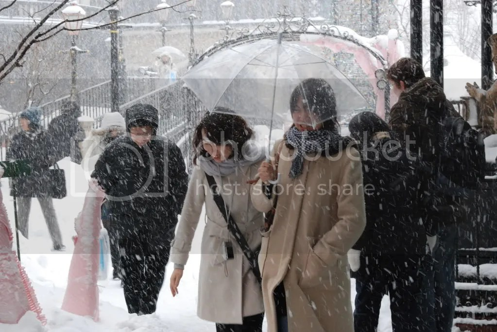 I saw this all over Sapporo: Japanese people walking in the snow with umbrellas.