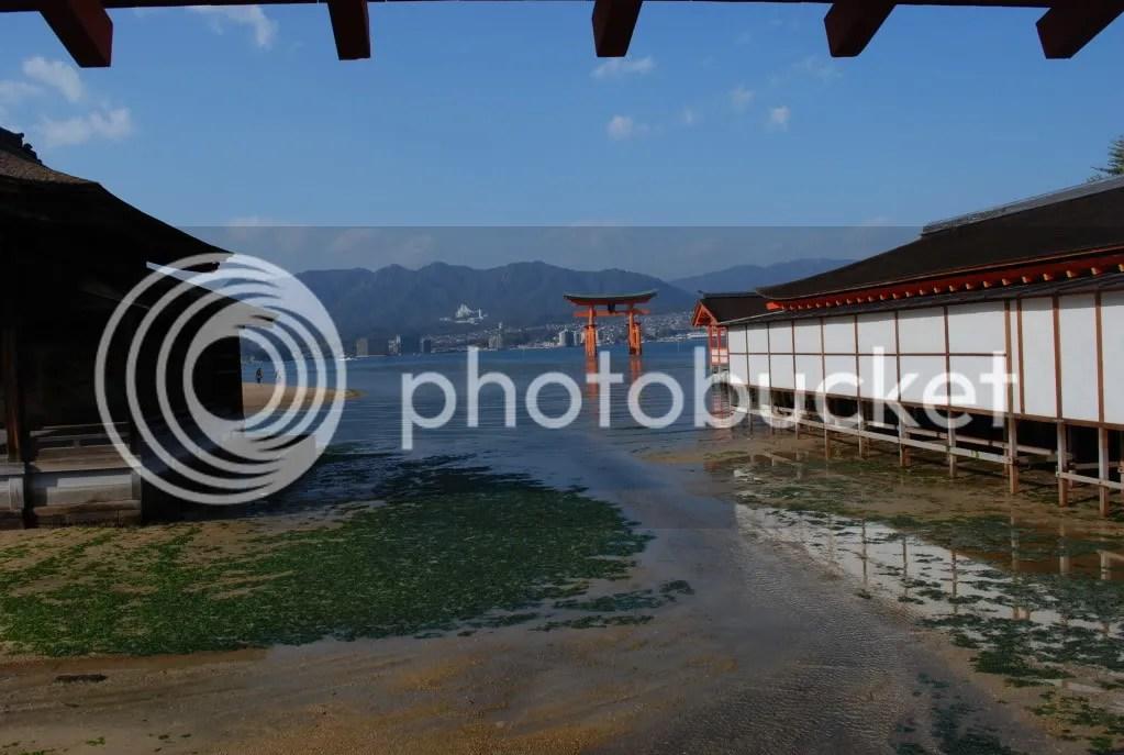 Torii from shrine