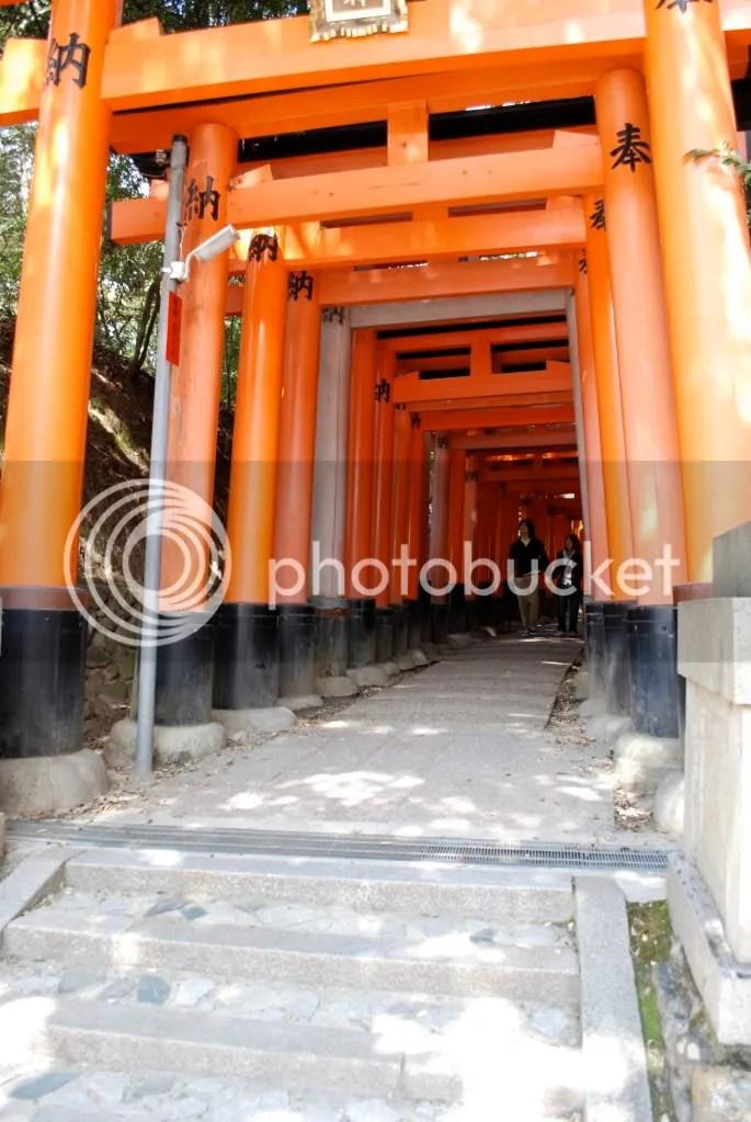 big gates
