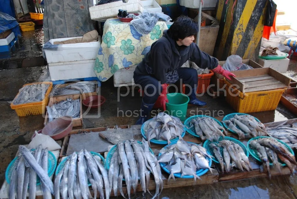 lady selling fish