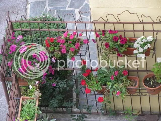 I giardini di ottobre  Forum di Giardinaggioit