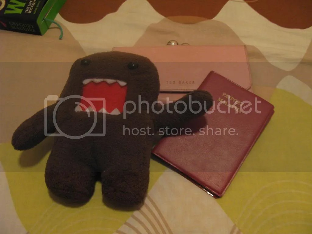 Travelling essentials : Domokun, wallet, passport and a book to read on the bus.