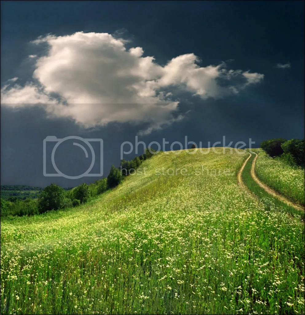 Winding Path photo WindingPath.jpg