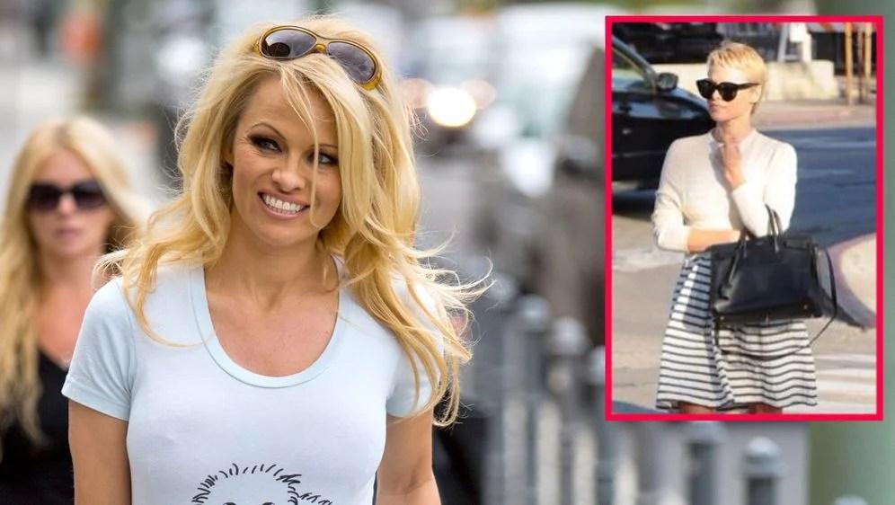 Pamela Anderson Mit Neuer Frisur Praktischer Kurzhaarschnitt Statt