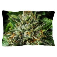 Marijuana Bedding