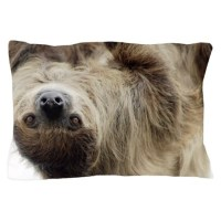 Sloth Pillow Case by Admin_CP9513411