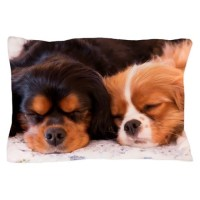 Sleeping Buddies Pillow Case by ...