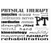 Gifts for Physical Therapy | Unique Physical Therapy Gift ...