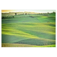 Tuscany Wall Decal