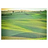 Tuscany Wall Decal