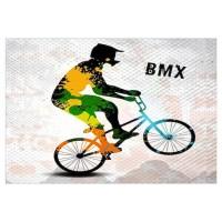 Bmx Wall Art