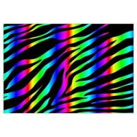 Rainbow Zebra Wall Art | Rainbow Zebra Wall Decor