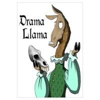 Llamas Wall Decals | Llamas Wall Stickers & Wall Peels