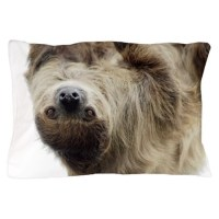 Sloth Pillow Case by IntotheWildPhotography