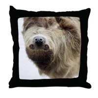 Sloth Throw Pillow by IntotheWildPhotography