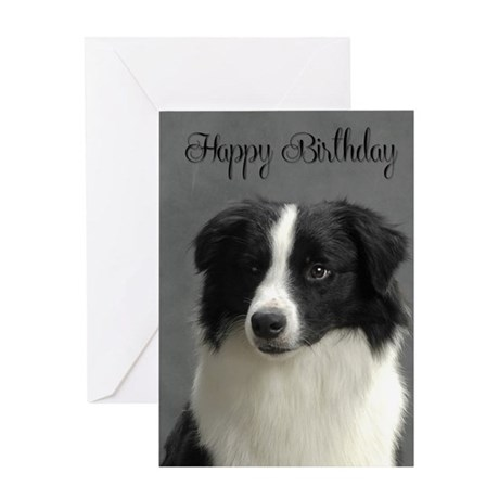 Border Collie Birthday Card By Shopdoggifts