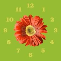 Pop Art Red Gerbera Daisy Wall Clock by trendyteeshirts