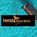 Tohora Bora Bora Snorkeling Lagoon Tours & Whale Watching