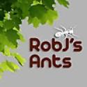RobJ's Ants