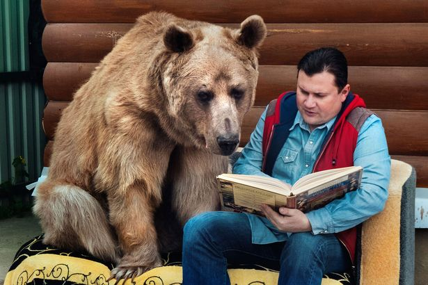 Stepan the bear with Yuriy reading a book
