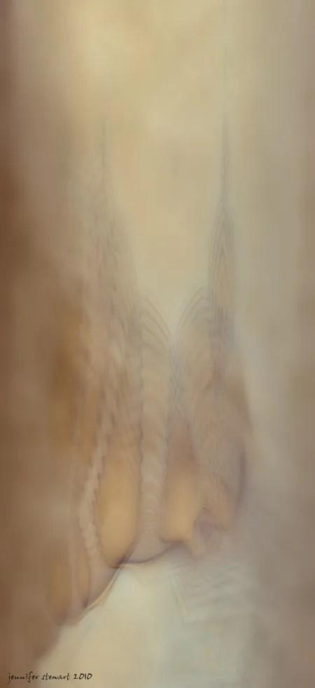 It'sALLLies by Jennifer Stewart