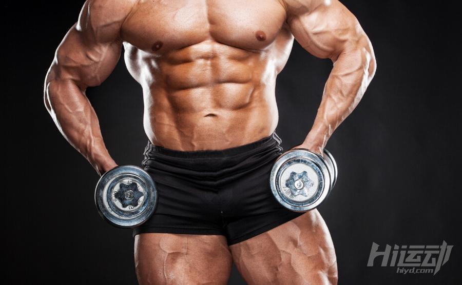 史上最全的肌肉訓練動作 28張gif圖教你練全身 - 壹讀